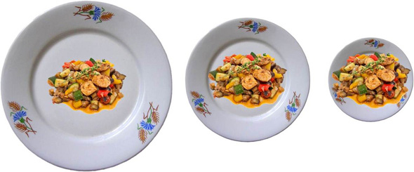 dinner-plates-different-sizes-same-food