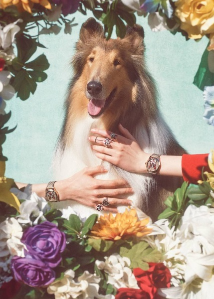The Year Of The Dog in Fashion
